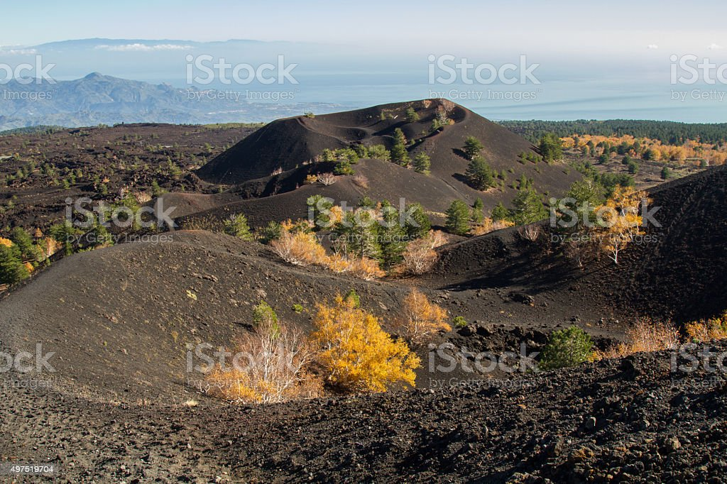 Volcano etna with colorful autumn stock photo