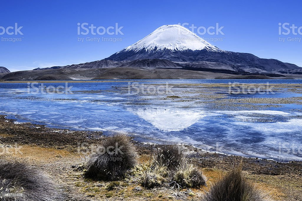 Volcano on the Altiplano Chile stock photo