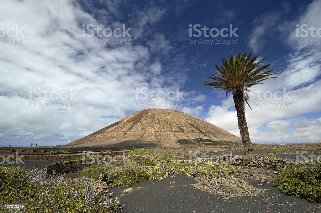 Volcano-agricultural landscape of the Lanzarote royalty-free stock photo