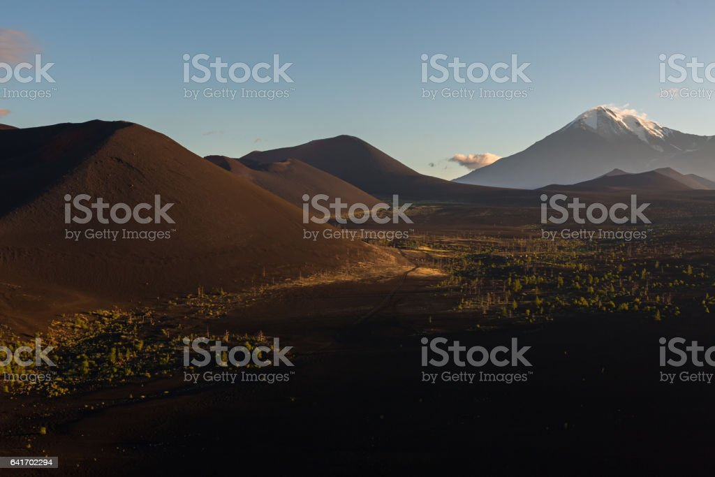 Volcanoes and Dead wood at dawn - consequence of catastrophic release of ash during the eruption of the volcano in 1975 Tolbachik north breakthrough stock photo