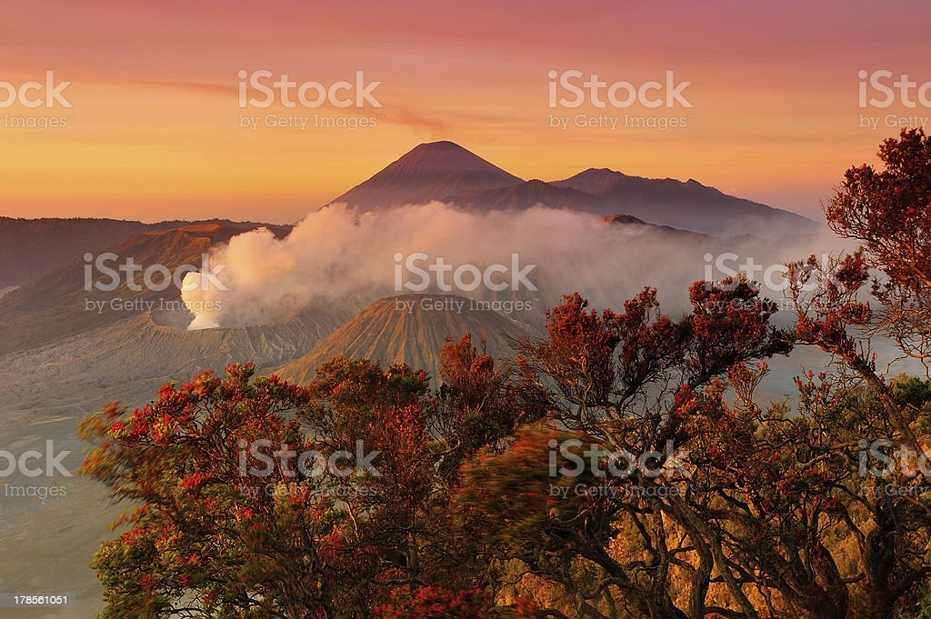 Volcanoes of Bromo National Park, Java, Indonesia stock photo