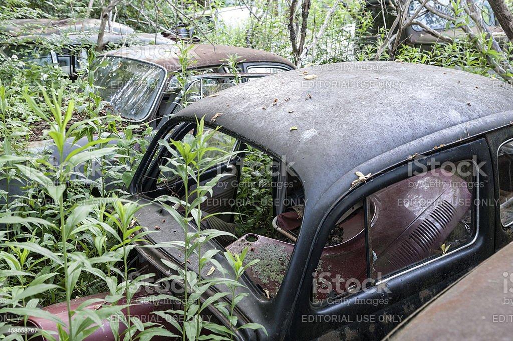 Volkswagen Junkyard stock photo