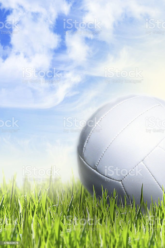 Volley ball in grass stock photo