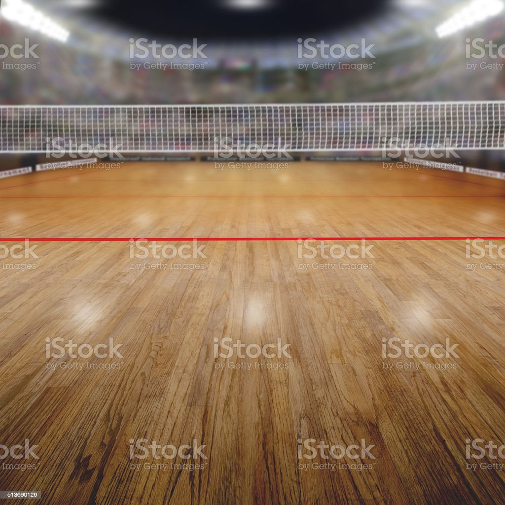Volleyball Arena With Spectators and Copy Space stock photo