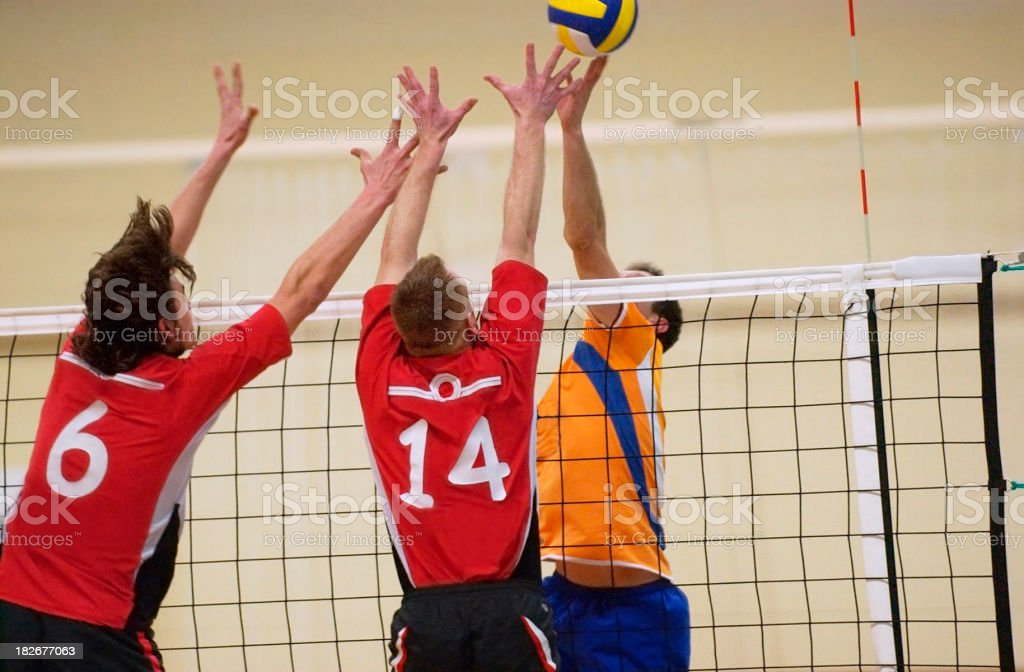 volleyball match royalty-free stock photo