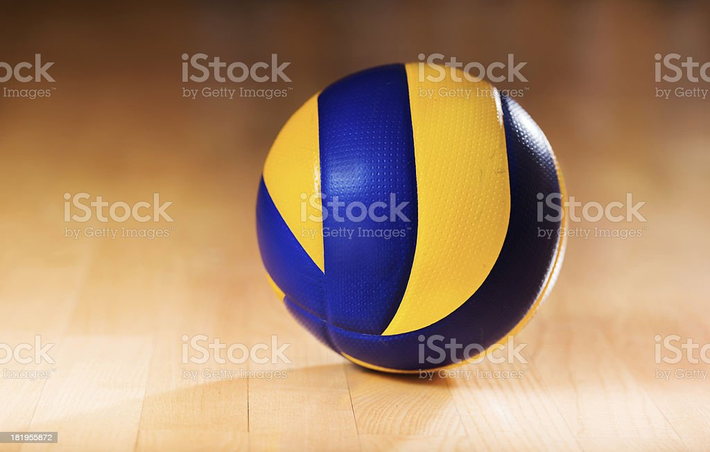 Volleyball. royalty-free stock photo