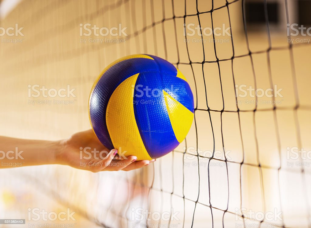 Volleyball. stock photo