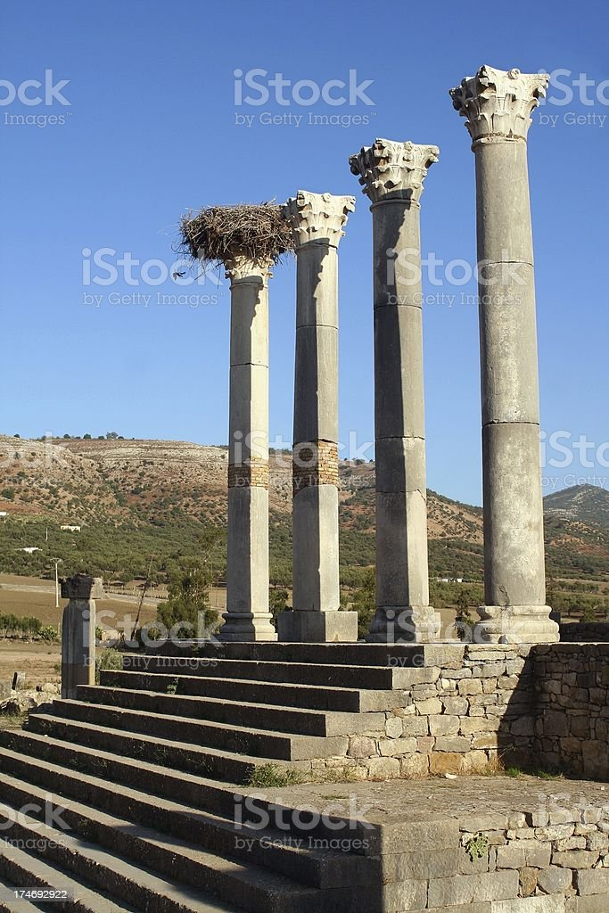 Volubilis capitol stock photo