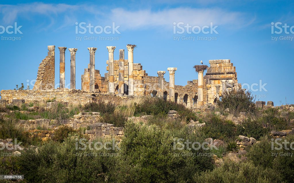 Volubilis stock photo