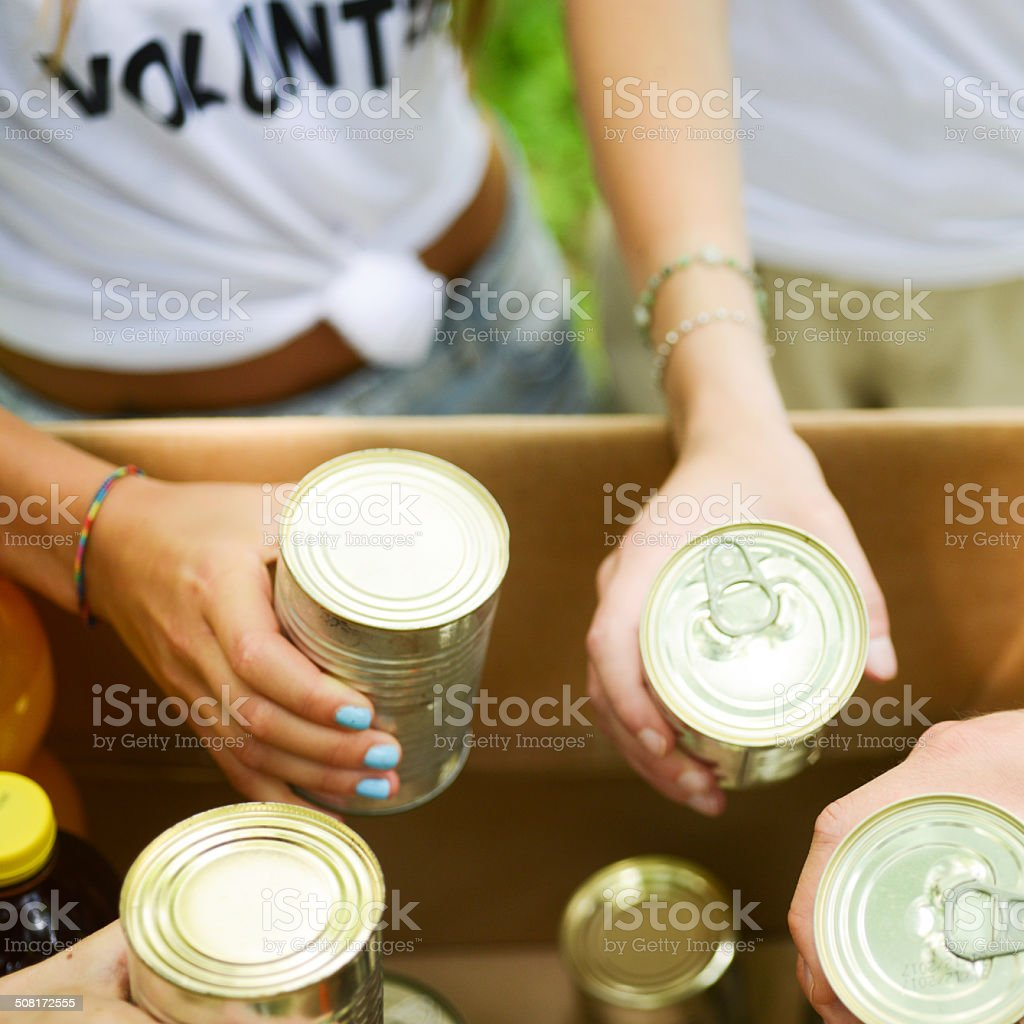 Volunteer and Canned Food stock photo