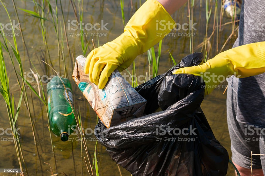 Volunteer collecting garbage from the lake selective focus stock photo