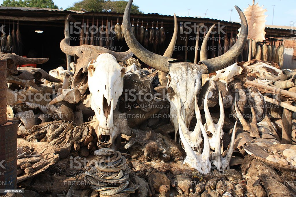 Voodoo Skulls & Supplies at Akodessewa Fetish Market, West Africa stock photo