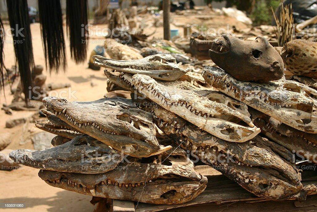 Voodoo Skulls at the Fetish Market in Lom?, Togo, Africa stock photo