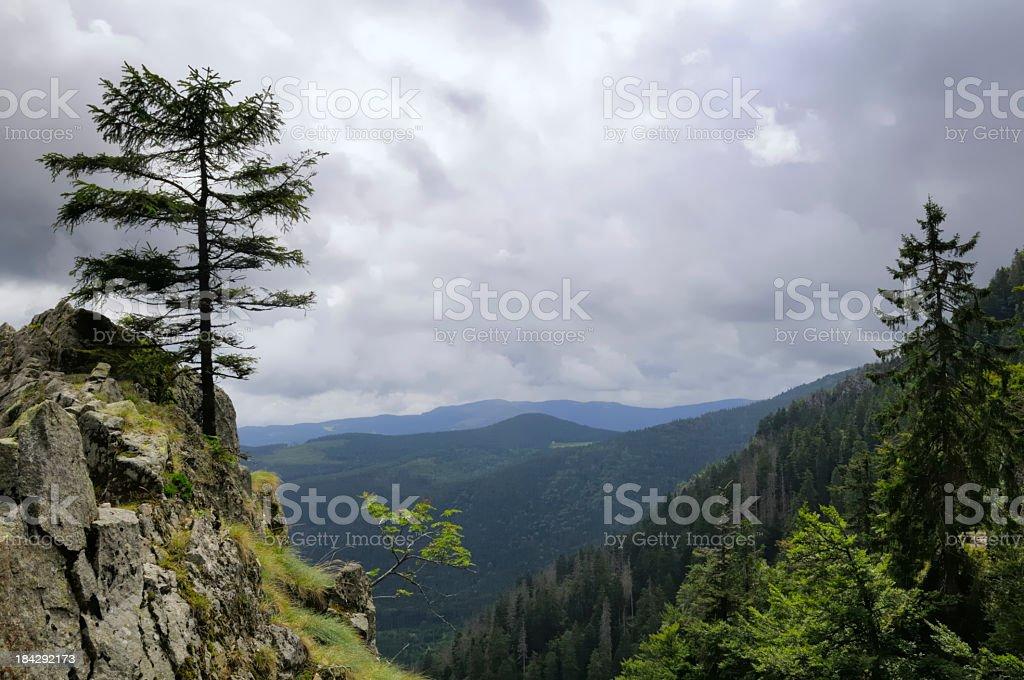 Vosges landscape stock photo