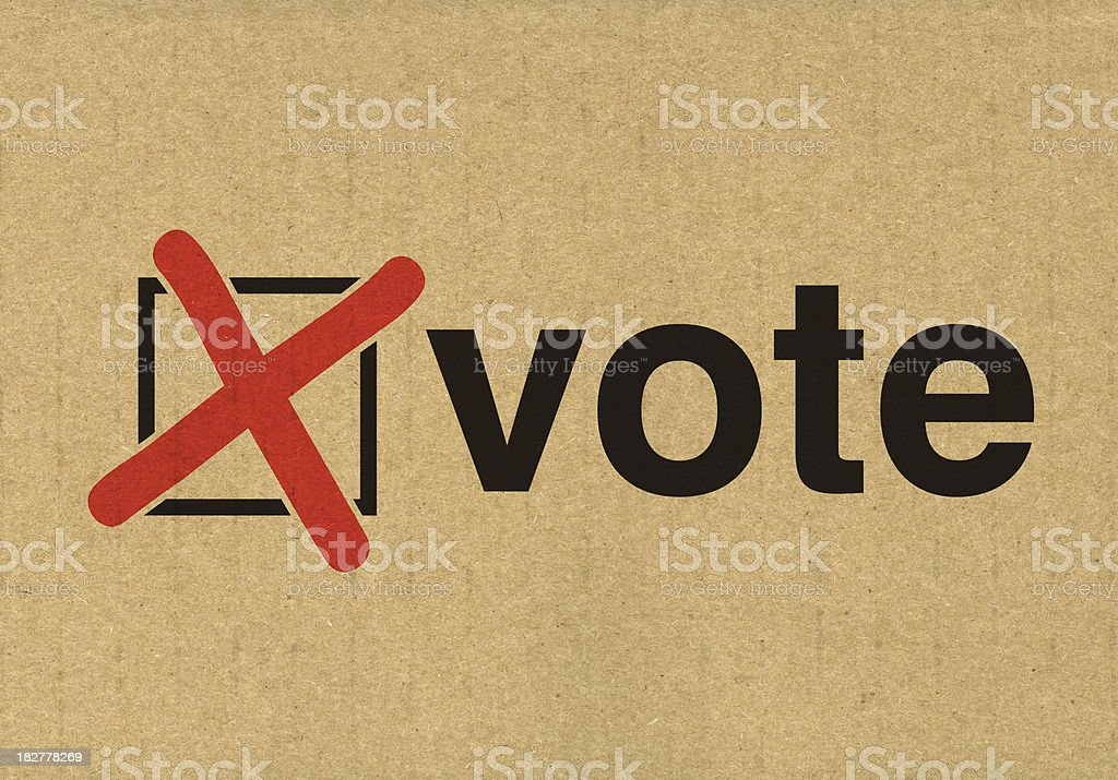 Vote in the election royalty-free stock photo