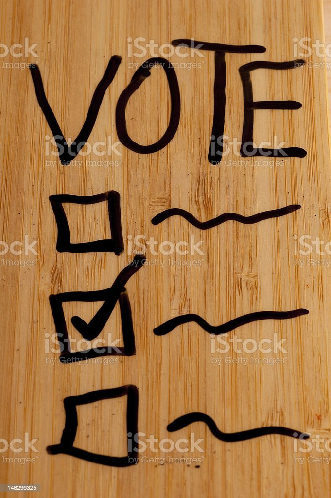 Vote on Dry Erase Board royalty-free stock photo