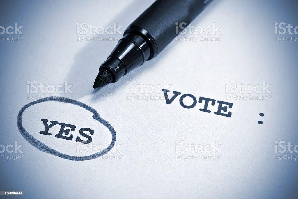 Vote stock photo