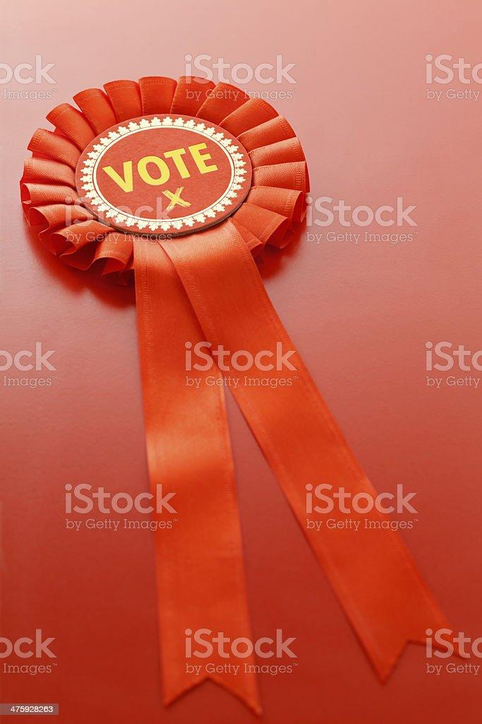 Vote Socialist stock photo