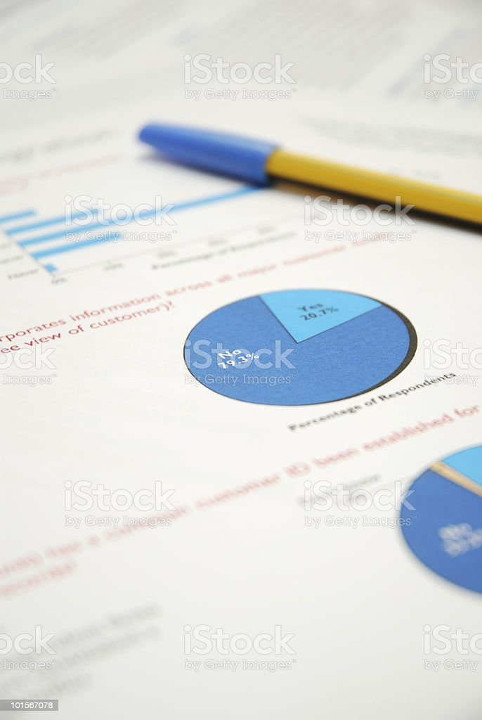 Vote Statistics Report royalty-free stock photo