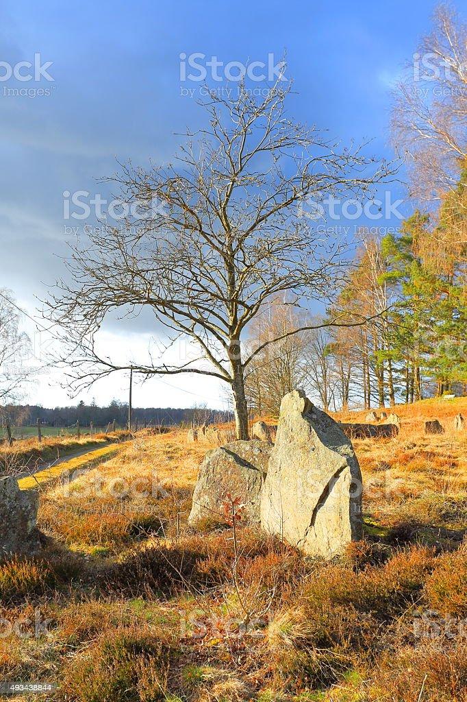Vätteryd ancient grave-field, Sweden stock photo