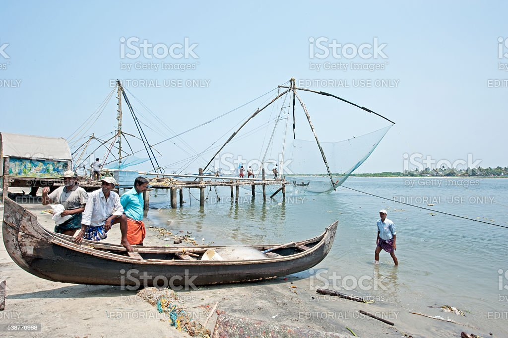 Vying for fish - Fort Kochi, Cochin, India stock photo