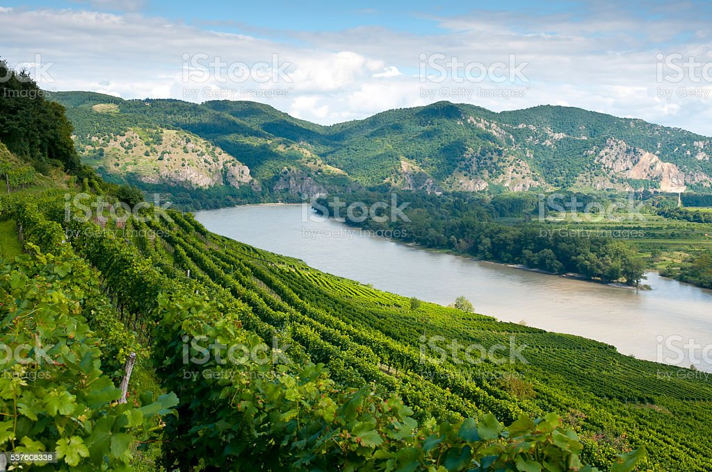 Wachau - View to the Danube Valley stock photo