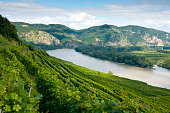 Wachau - View to the Danube Valley