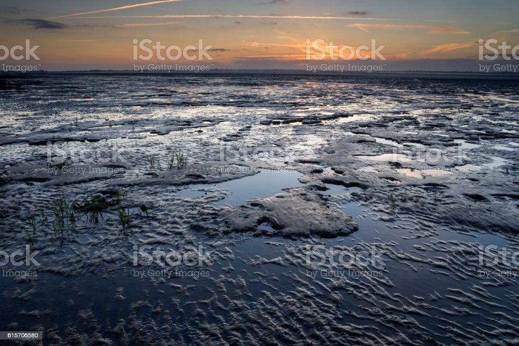 Wadden sea at dusk stock photo