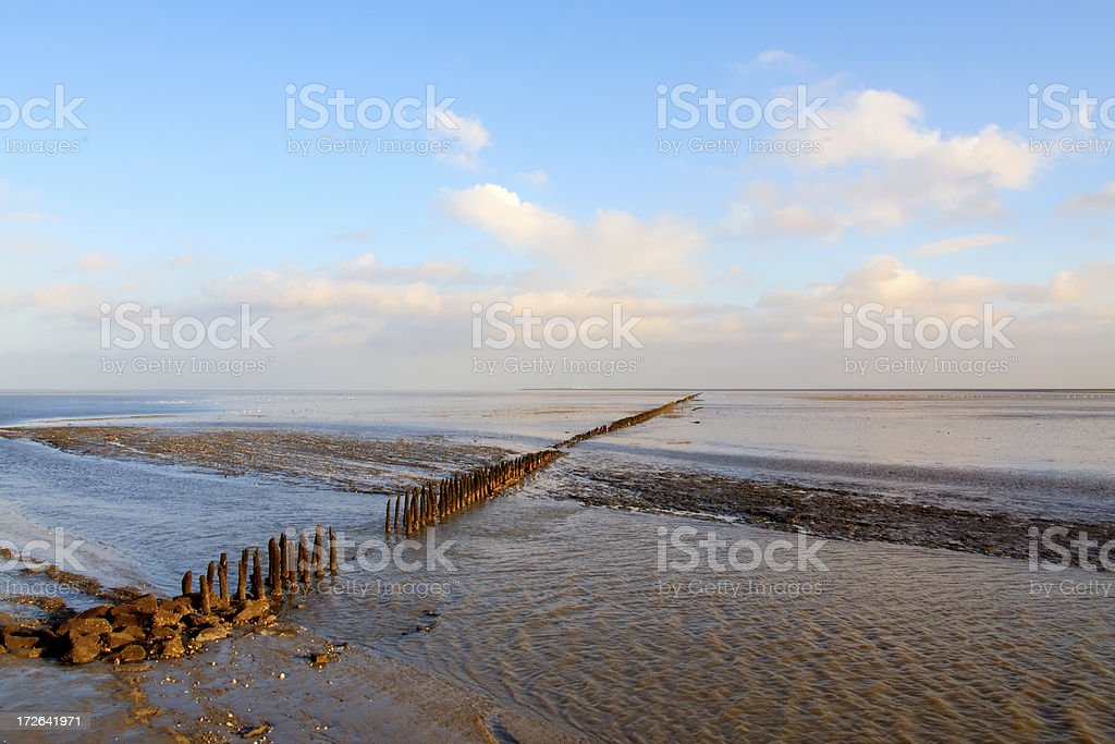 Wadden Sea ebbing landscape royalty-free stock photo