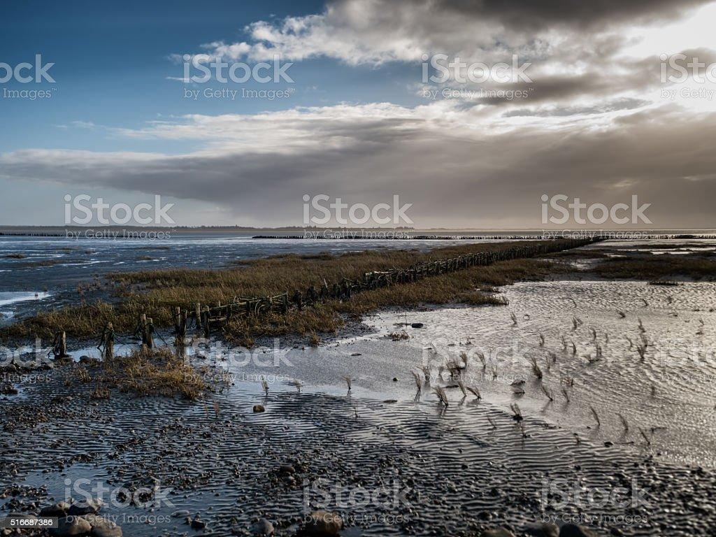 Wadden sea from the island Mando, Denmark stock photo