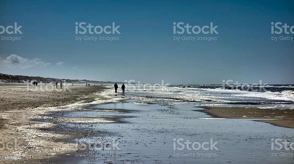 Wadden sea in Henne, Denmark stock photo