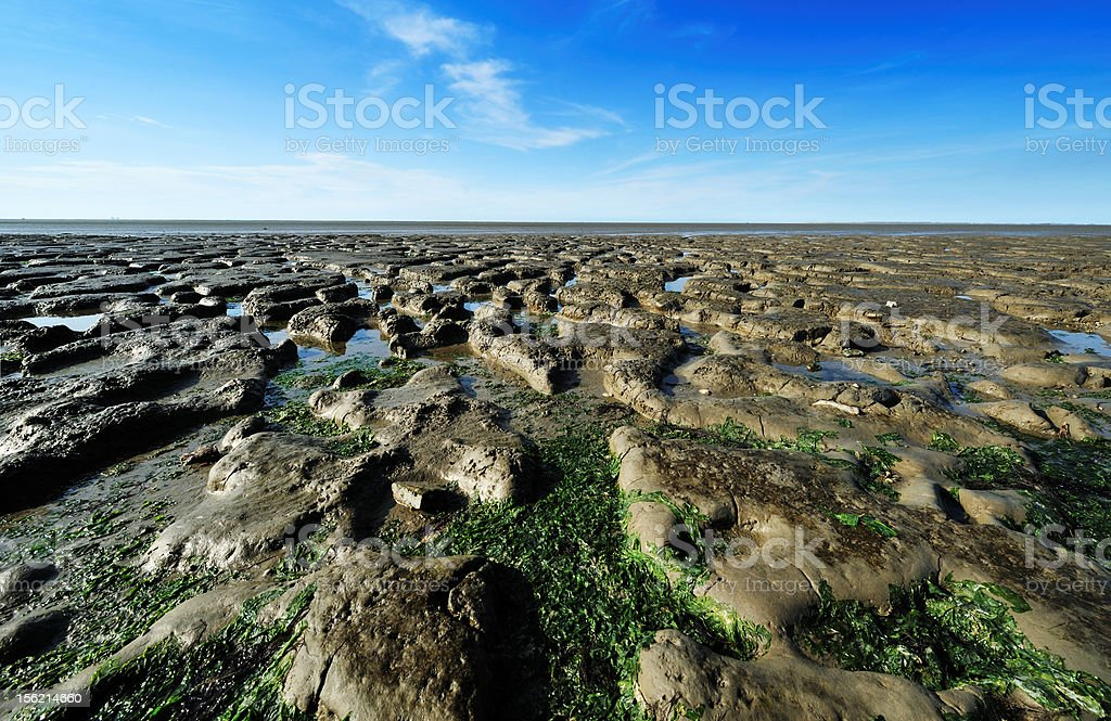 Wadden Sea in the Netherlands stock photo
