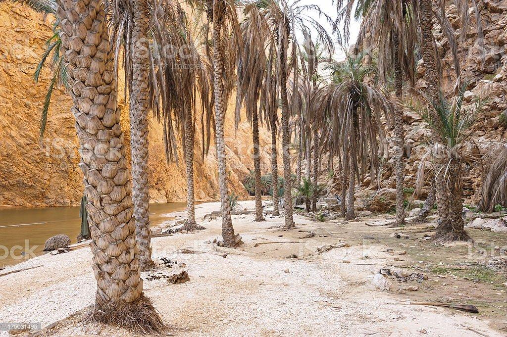 Wadi Al Shab royalty-free stock photo