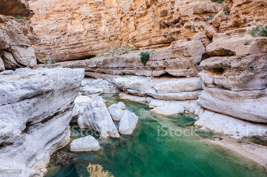 Wadi detail royalty-free stock photo