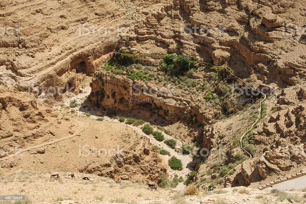Wadi Qelt royalty-free stock photo