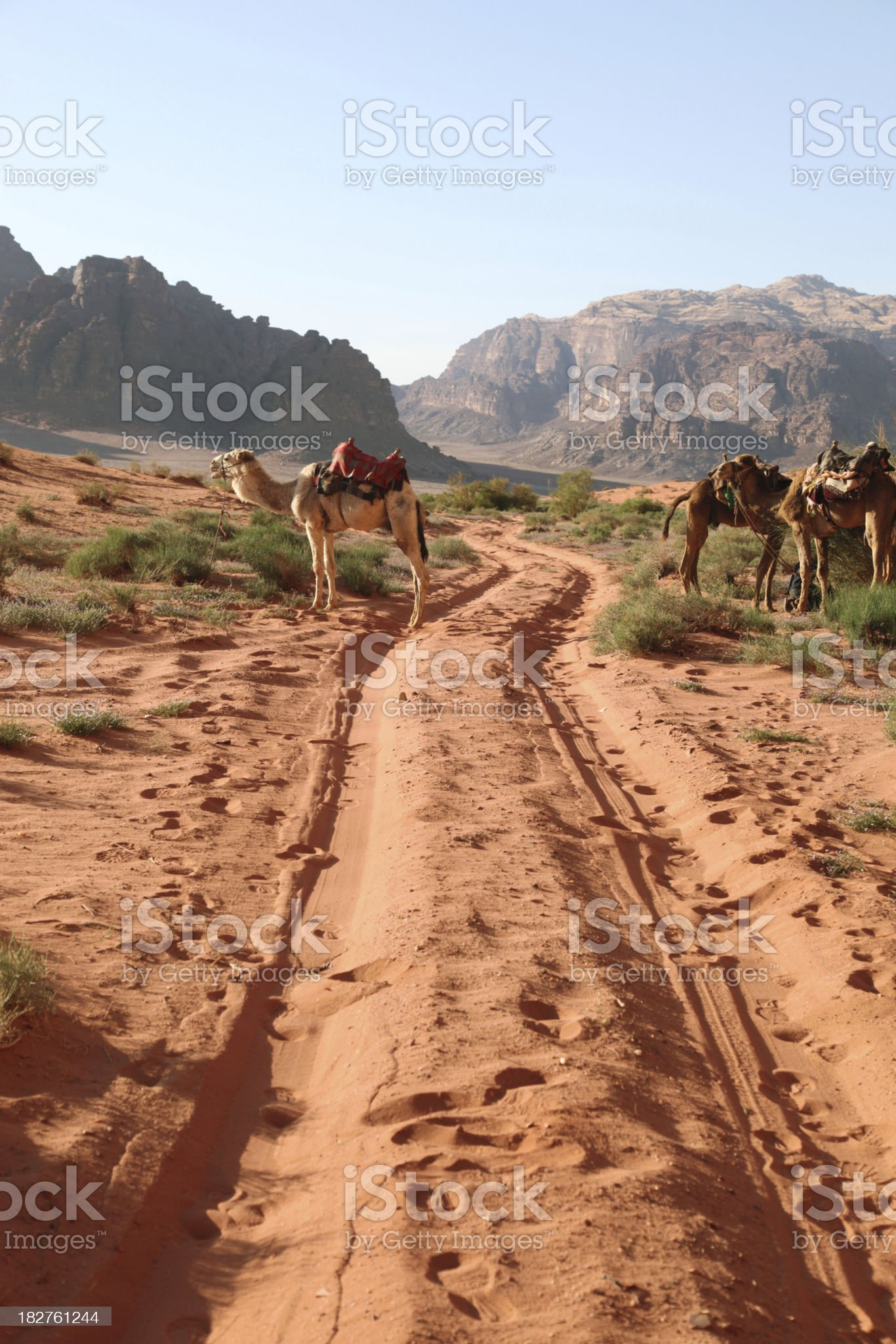 Wadi rum desert in Jordan royalty-free stock photo