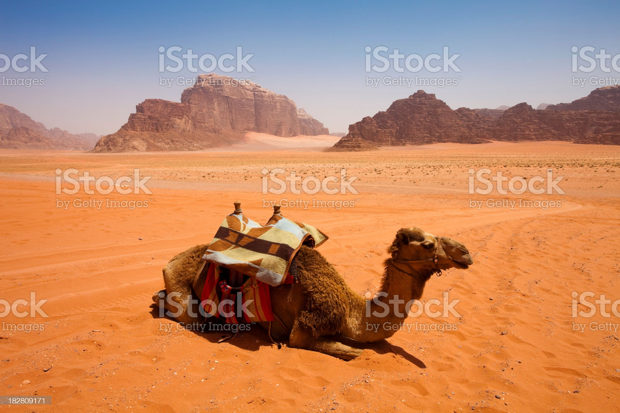 Wadi Rum Desert, Jordan royalty-free stock photo