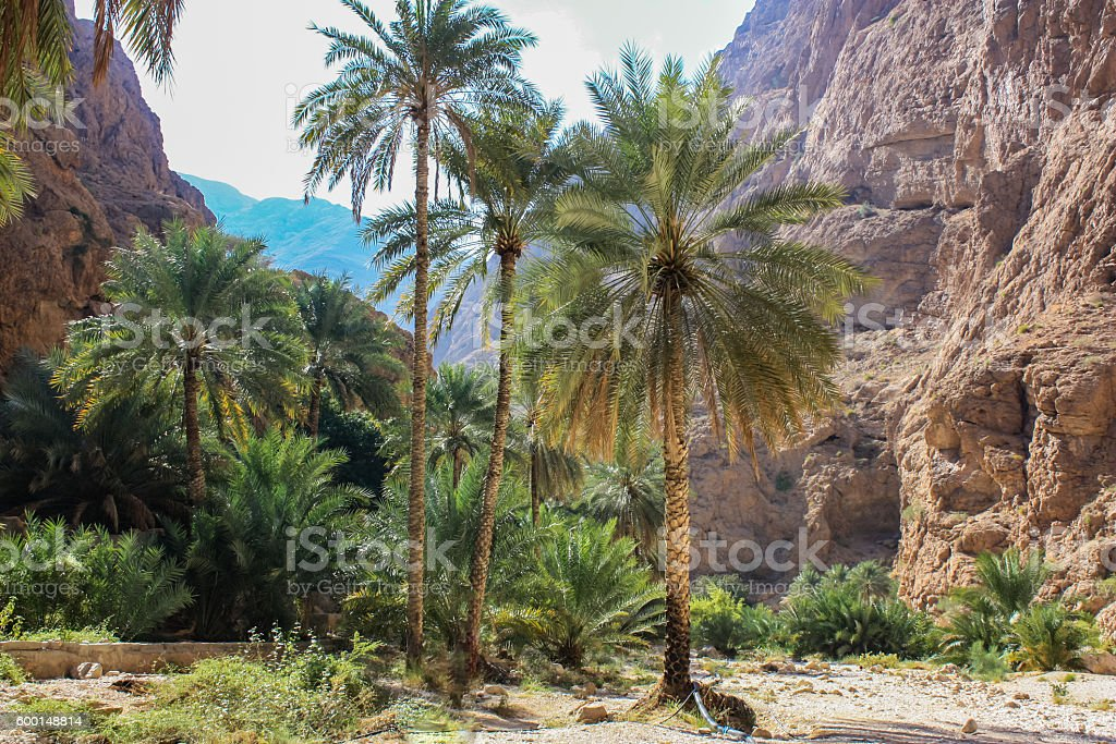 Wadi Shab in Oman stock photo