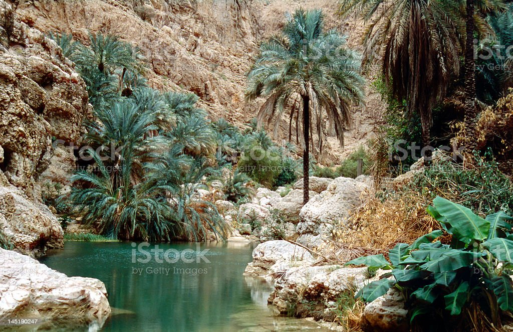 Wadi Shab stock photo