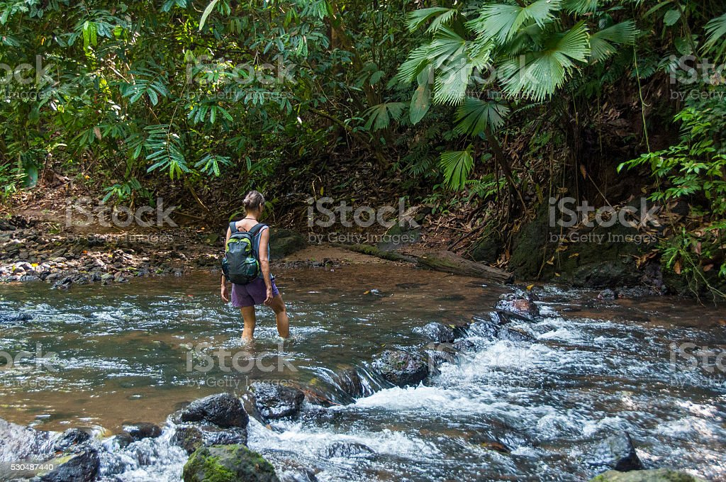 Wading a Corcovado stream stock photo