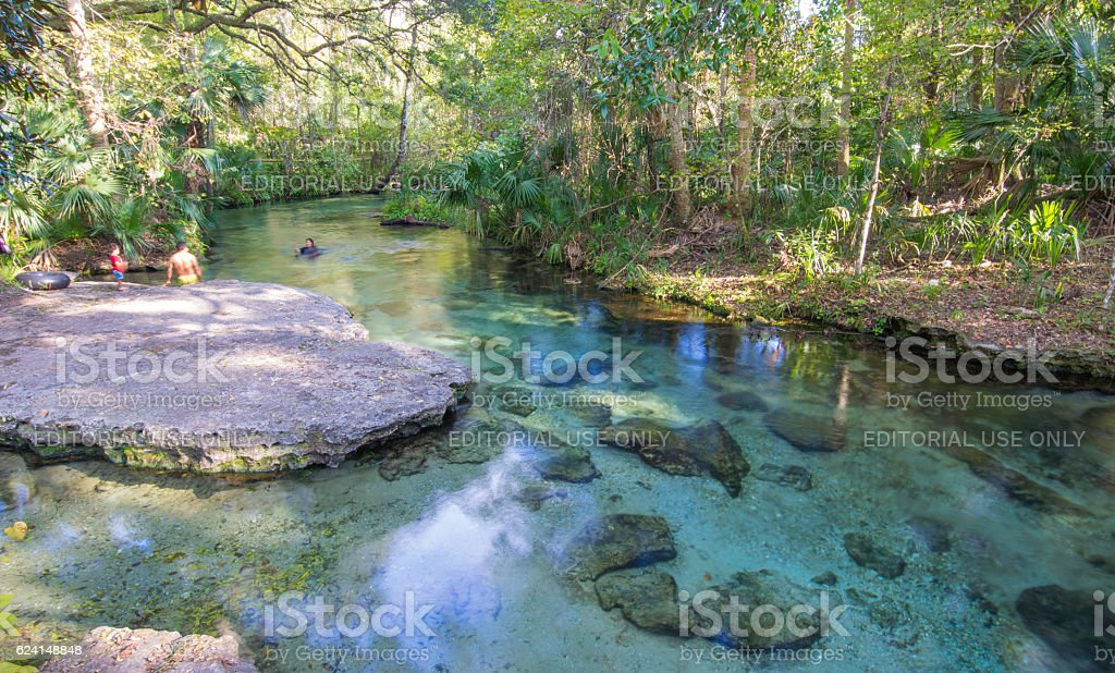 Wading in Clear Spring in Florida stock photo