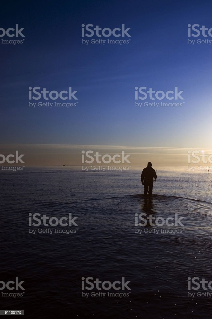 Wading Out royalty-free stock photo