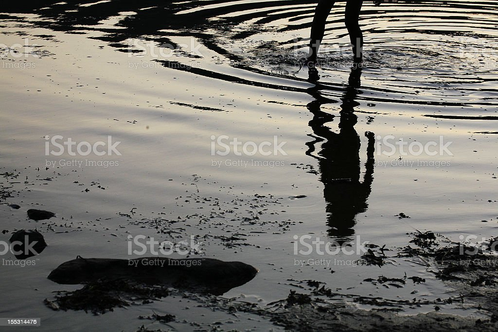 Wading stock photo