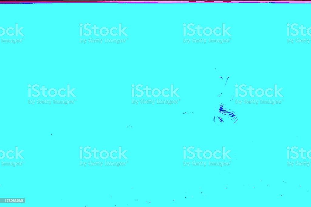 wading stock photo