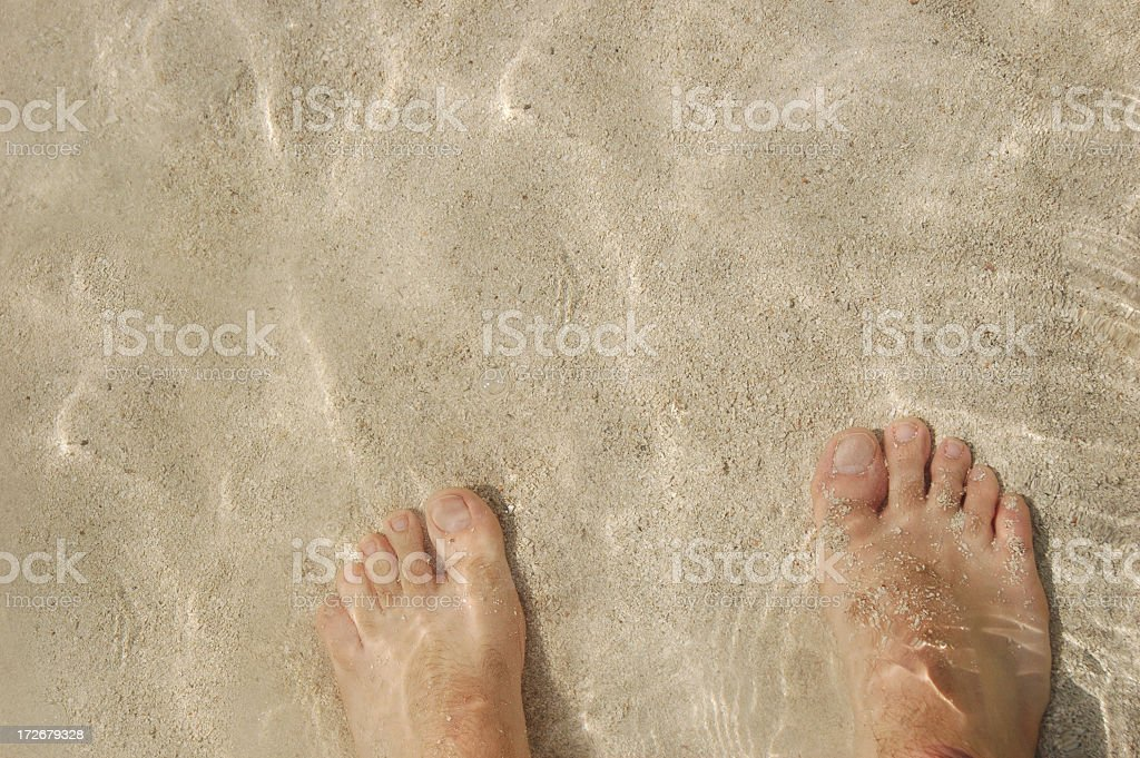 Wading sandy feet royalty-free stock photo