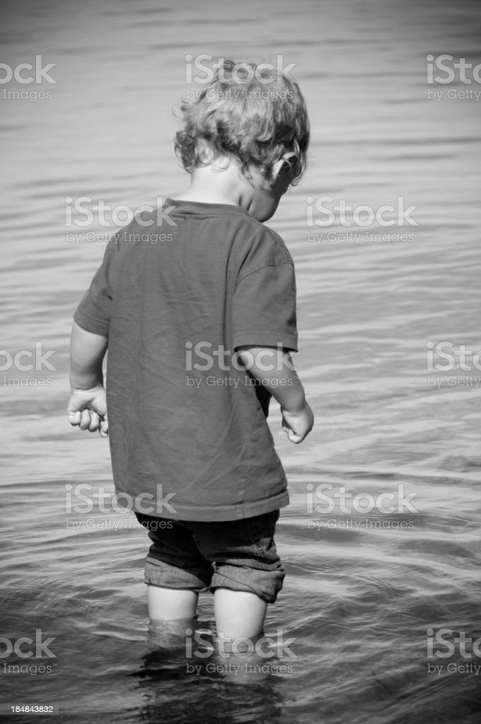 Wading toddler royalty-free stock photo