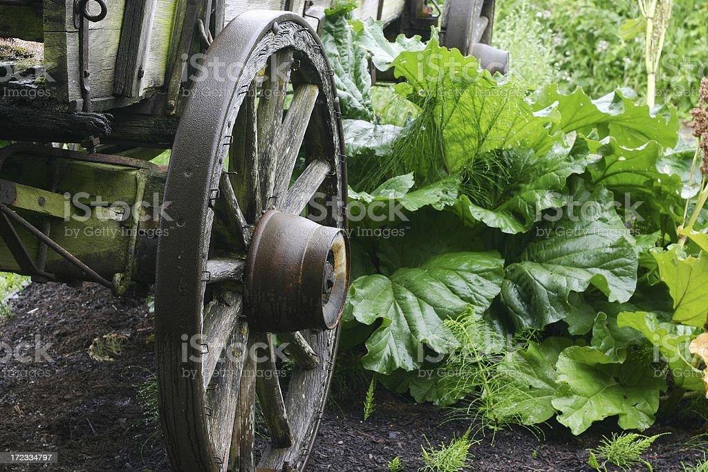 Wagon Wheel 2 stock photo