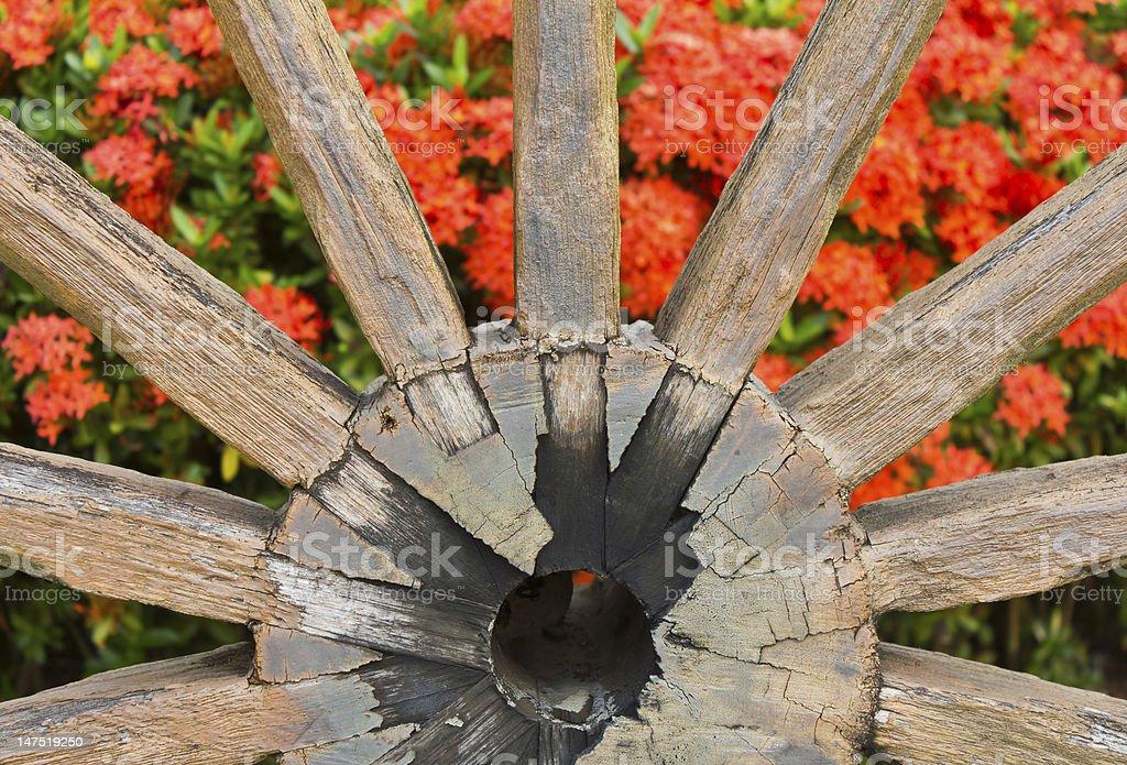 Wagon wheels ix ora. royalty-free stock photo