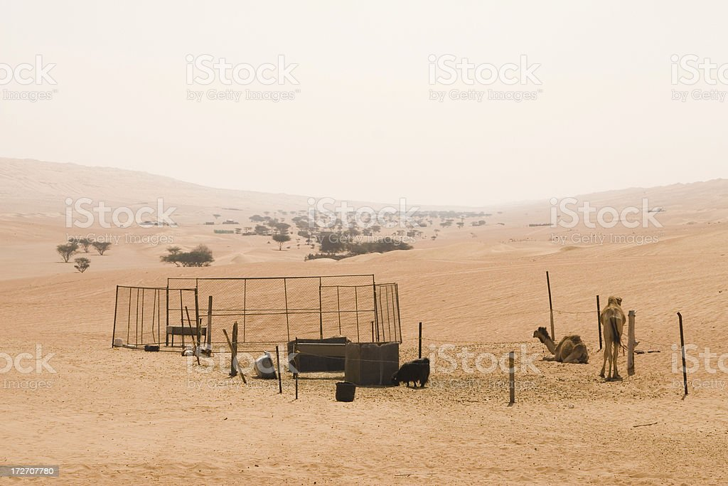 Wahiba Sands Oman stock photo