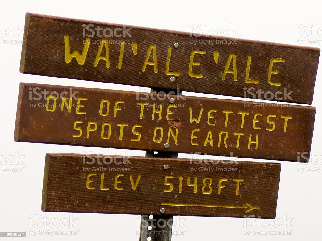 Waialeale royalty-free stock photo